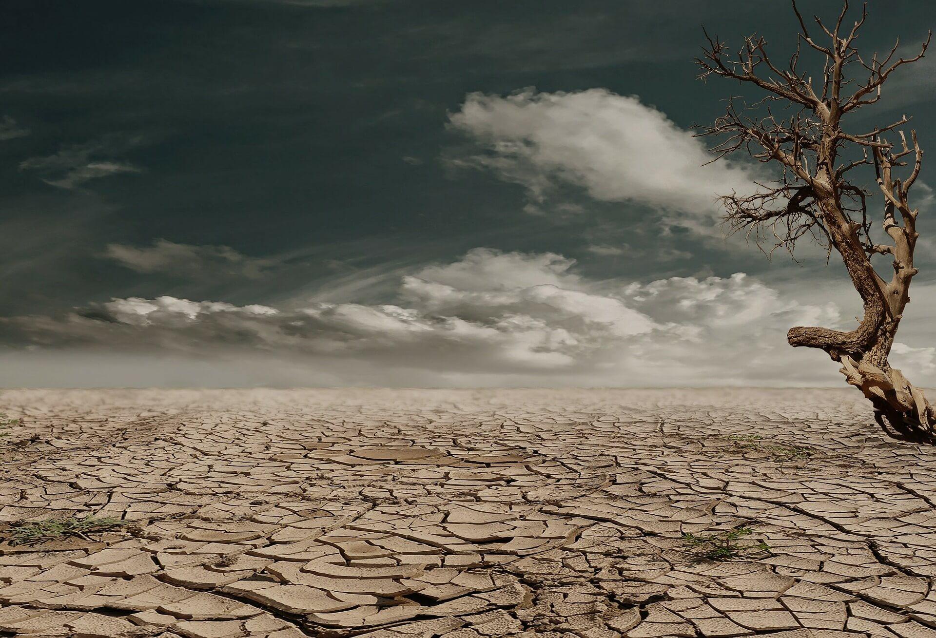dia-mundial-sequia-desertificacion