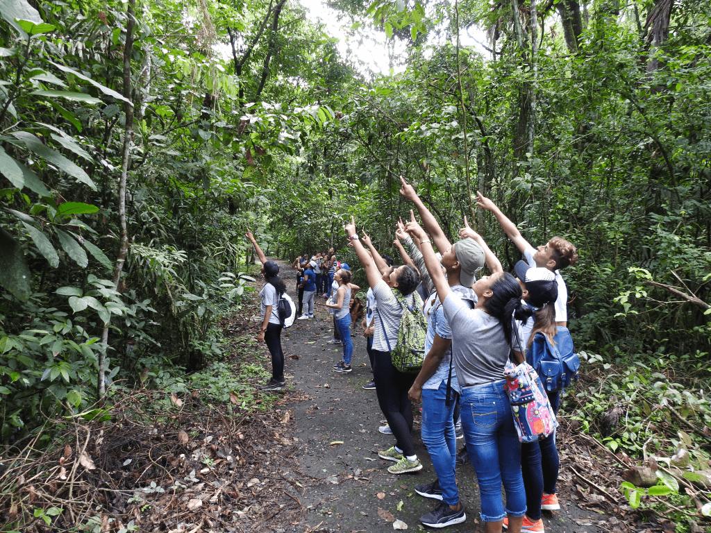 panama-rainforest-entrevista-ycmt