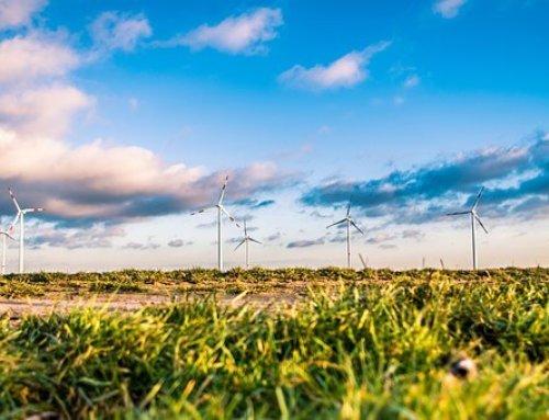 Las energias renovables… internacionales e innovadoras